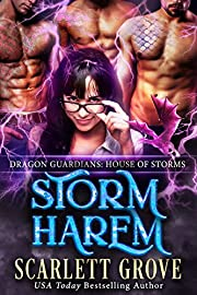 Storm Harem: House of Storms (Reverse Harem Romance) (Dragon Guardians Book 5)