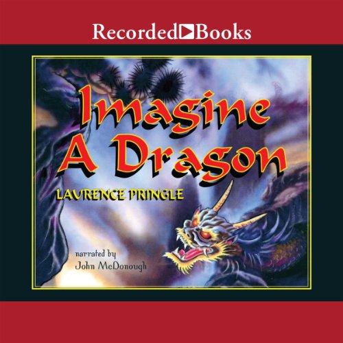 Imagine a Dragon
