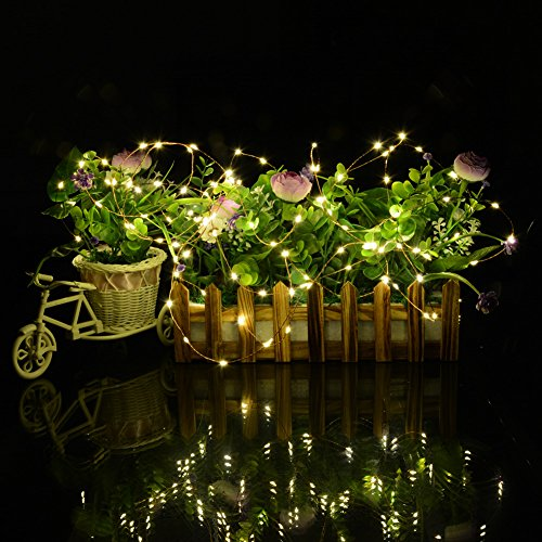Solar String Lights For Garden : Dephen Solar Outdoor String Lights LED Christmas Lights Solar Powered String Lights for Garden ...