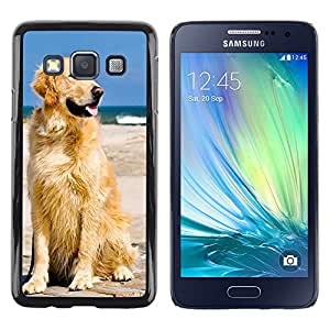 - Golden Retriever Dog - - Hard Plastic Protective Aluminum Back Case Skin Cover FOR Samsung Galaxy A3 a3000 Queen Pattern