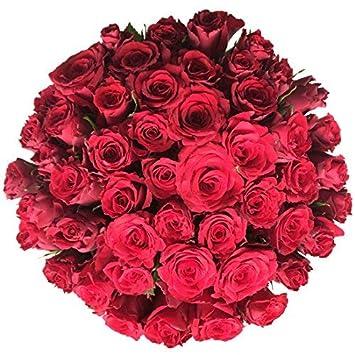 Grosser Blumenstrauss Xxl Mit 50 Roten Rosen Amazon De Garten