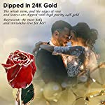 Sinvitron-Gold-Dipped-Rose-Long-Sterm-Real-Rose-Dipped-in-24K-Gold-with-Stand-Gift-Box-Ideal-Gift-for-Valentiness-DayWedding-AnniversaryMothers-DayBirthdayChristmas-for-her-Red-Bud