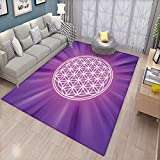 Sacred Geometry Door Mats for Inside Abstract Overlapping Circles on Spiritual Vibrant Background Print Bath Mat for tub Bathroom Mat Fuchsia Purple