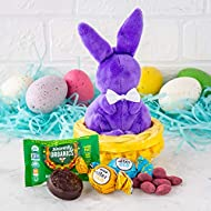 Mini Easter Gift Basket: Healthy Easter Candy Treats & Chocolate Gift Basket With Cute Plush Bunny For Kids & Adults