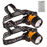 2 Pack of Active Eye Green LED Head Lamp Light, 17 High Intensity LED Bulbs + Twin Canaries Chart