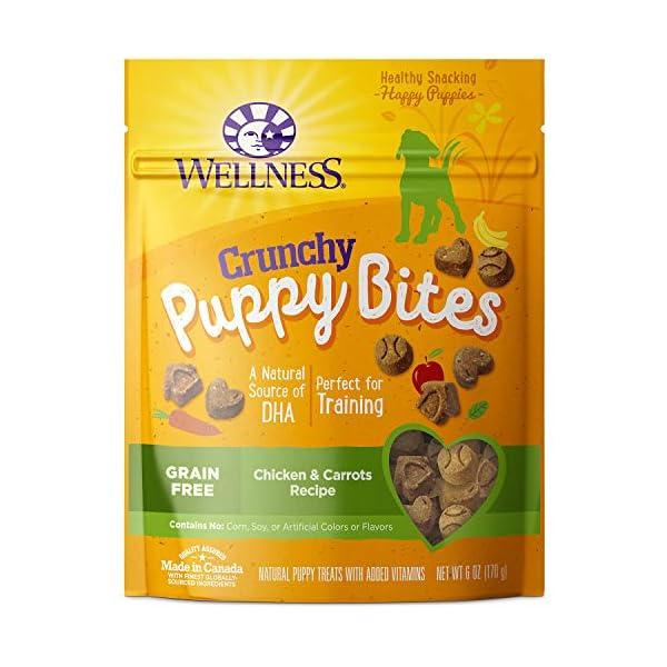 Wellness Natural Grain Free Puppy Training Treats 1