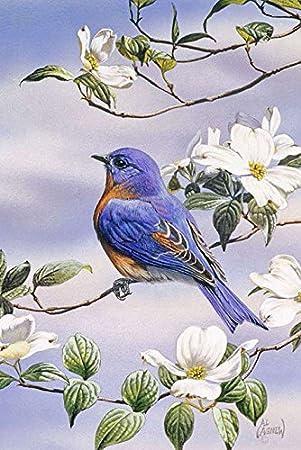 Toland Home Garden Bluebird And Dogwood 28 X 40 Inch Decorative Spring Bird Tree Flower House Flag Garden Outdoor Amazon Com