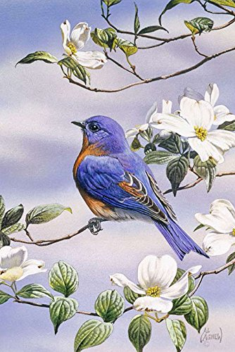 Toland Home Garden Bluebird and Dogwood 12.5 x 18 Inch Decorative Spring Bird Tree Flower Garden ()