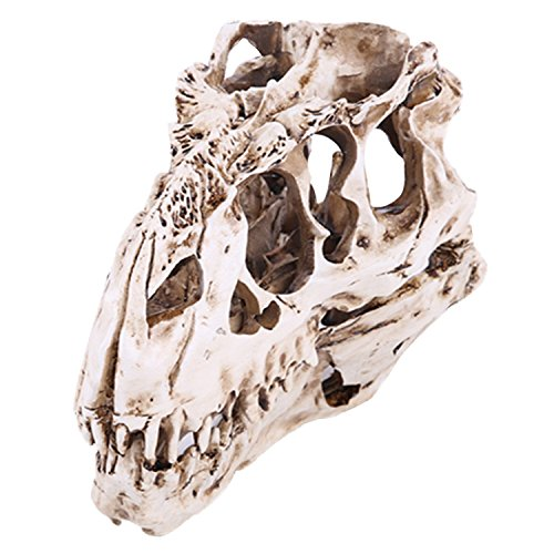 Gosear Scary Artificial Resin Crafts Dinosaur Tooth Skull Skeleton Model for Haunted Home Halloween Party Decoration Teaching Props