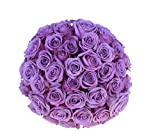2 Dozen Farm Fresh Purple Roses Bouquet By JustFreshRoses | Long Stem Fresh Purple Rose Delivery | Farm Fresh Flowers