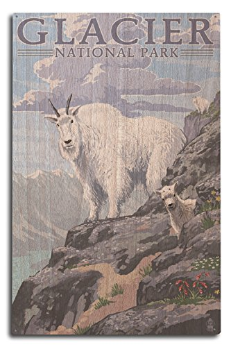 - Lantern Press Glacier National Park, Montana - Mountain Goat and Kid (10x15 Wood Wall Sign, Wall Decor Ready to Hang)