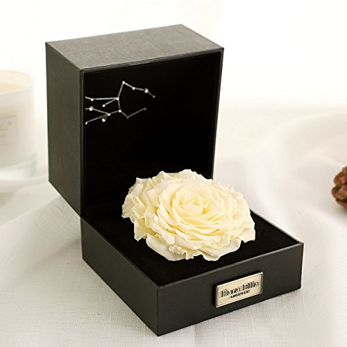"PARA ELLA 5"" Handmade Forever Flower and Preserved Rose with Constellation Sign (Virgo 23rd Aug to 22nd Sep), Best Anniversary, Birthday for her"