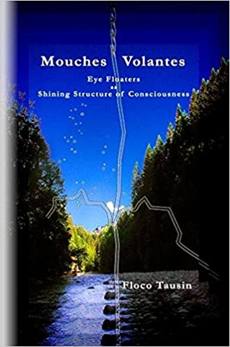 Mouches Volantes - Eye Floaters as Shining Structure of