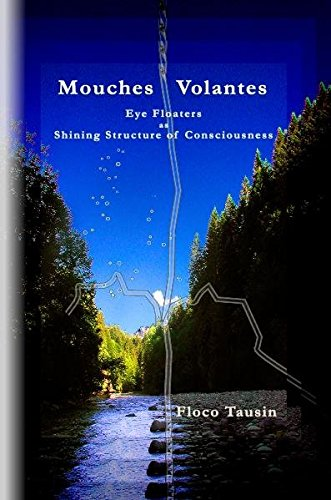 Mouches Volantes - Eye Floaters as Shining
