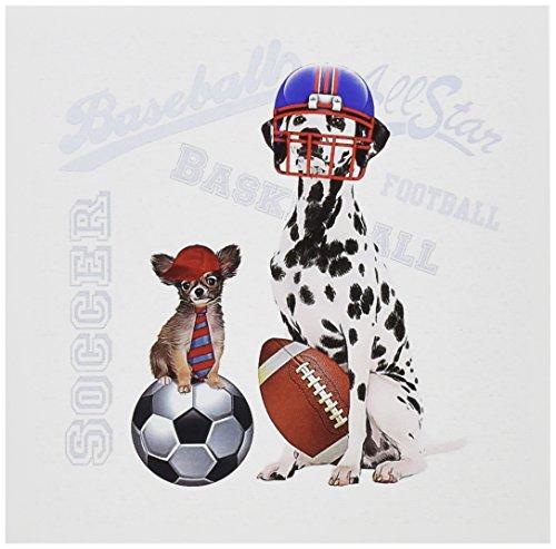 3dRose Dalmatian Football Papillon Baseball