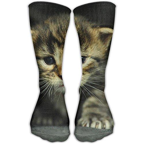 kitten dressed up - 7