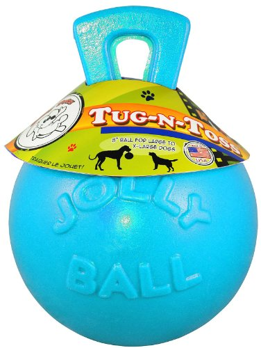 Jolly Pets Tug-N-Toss Jolly Pet Toy Ball, 8-Inch, Blueberry, My Pet Supplies