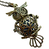YOur perSOnal STYlish Essential oil necklace Steampunk owl gold tone d2 0