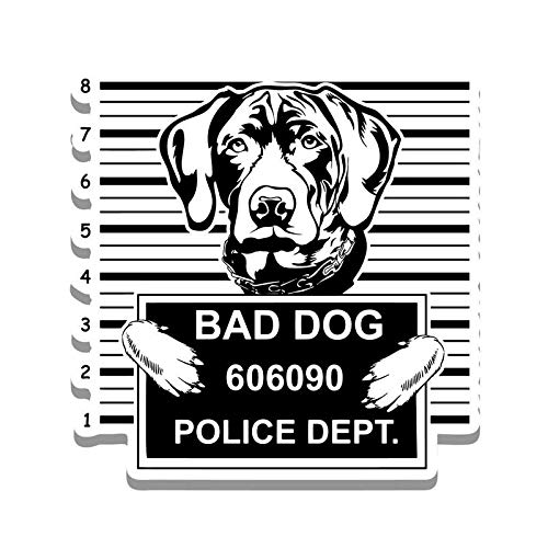More Shiz Bad Dog German Shorthaired Pointer Jail Funny Cute Vinyl Decal Sticker Car Truck Van SUV Window Wall Cup Laptop One 5.25 Inch Decal MKS0868
