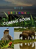 Wild Srí Lanka. Coming soon