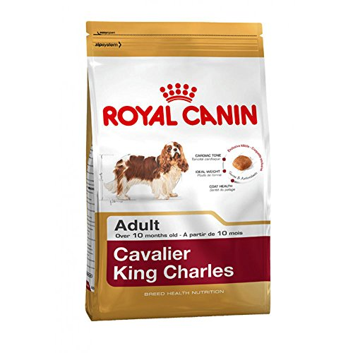 Royal Canin Cavalier King Charles Wholesome and Natural Adult Dry Dog Food 1.5kg ( 3.3 pounds)