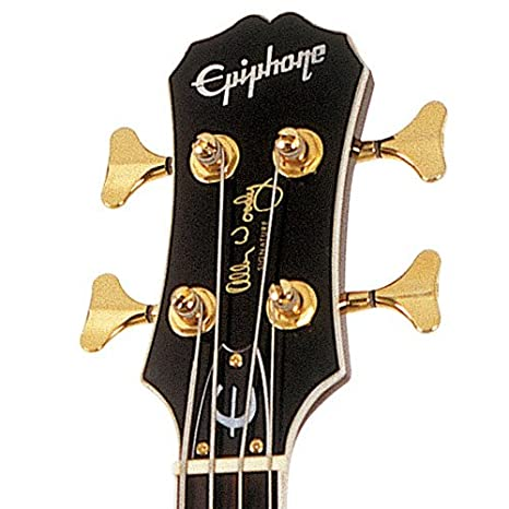 Epiphone Allen Woody RumbleKAT - Bajos eléctricos, color wine red: Amazon.es: Instrumentos musicales