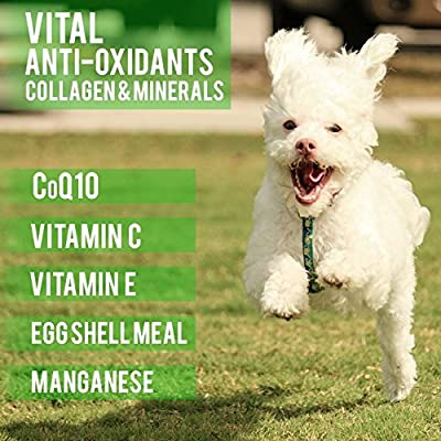 Hip and Joint Supplement for Dogs with the Most Active Ingredients on the Market: Glucosamine, MSM, Chondroitin, Organic Turmeric, Omega 3, CoQ10 and More - 90 Chews - Made in USA