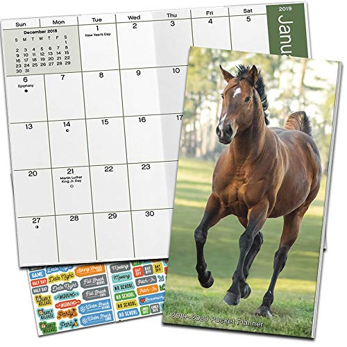 Horses Monthly Pocket Planner 2019-2020