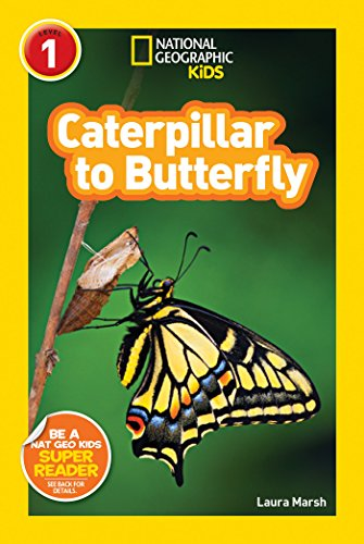 Swallowtail Life Cycle - National Geographic Readers: Caterpillar to Butterfly