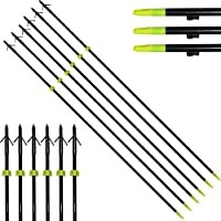 Sportsmann Archery Fishing Arrows Bowfis...