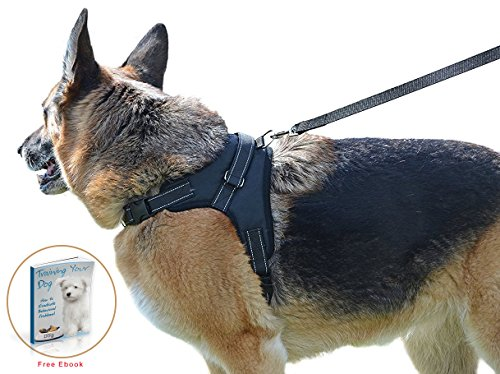 Dog Harness for Large, Medium & Small Breed - Complete Harness & Leash Set; Reflective, Adjustable Harness With Handle. No Choke, No Slip. Excellent for Training, Walking, Hiking. No Pull Effect.
