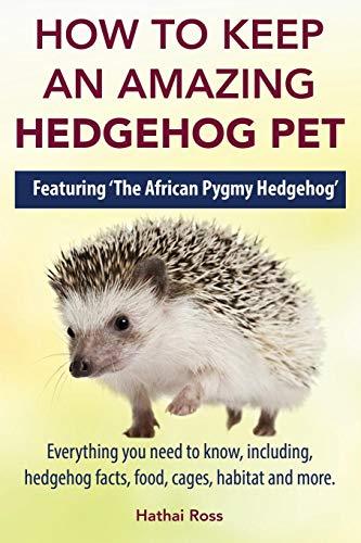 How to Keep an Amazing Hedgehog Pet.
