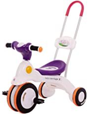 LovemyhomeDD Tricycle Push Handle Kid Toddler Toy for Age 2 Years Old