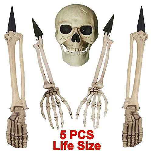 Skeleton In Ground (yosager Skeleton Stakes Realistic Skull and Arms Legs Halloween Yard Stakes, Indoor Outdoor Graveyard Lawn Decorations, Set of 5 Life)