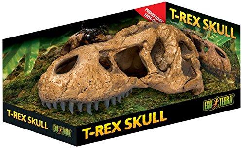 Exo Terra T-Rex Skull Terrarium Decor