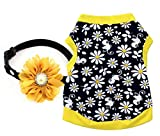 Ollypet Set of 2 Dog Clothes Xsmall For Small Dogs Summer Shirt Flower Collar Cute Yellow Outfit Girl Puppy Cat Pet Chihuahua Yorkie