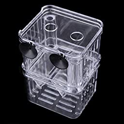 Aquarium Breeder Breeding Hatchery Tank Multi Functional Divider Spawning for Shrimp Fish