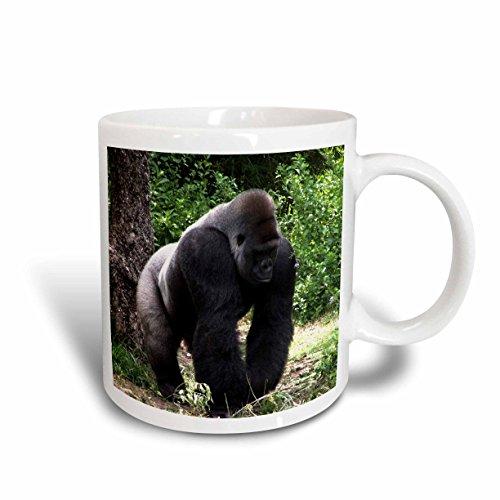 Male Gorilla Mug<br>15 Ounce Mug