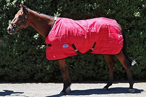 Standard Neck Stable Blanket (Barnsby Equestrian Horse Stable Rug / Blanket - Standard Neck - 210 Denier with 200g Fill Red 69