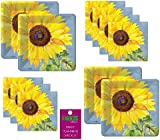 Sunflower Party Supplies Birthday Bridal Wedding Dessert Plates And Napkins for 16 Guests  sc 1 st  Amazon.com & Amazon.com: Paper Plates Dinner Size Paper Party Supplies Sunflowers ...