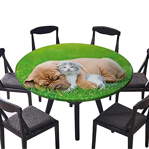 Round Polyester Tablecloth Table Cover Sleeping Bordeaux Puppy Dog hugs Newborn Kitten on Green Grass for Most Home Decor 40