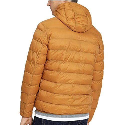 Lyle Puffer Cappotto Uomo Lightweight Dark Scott Gold amp; BrqwBc7RA