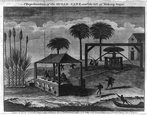 1749 Photo A representation of the sugar-cane and the art of making sugar Print shows sugarcane processing, probably in the West Indies, with a white overseer directing Natives at a press(?) and boili
