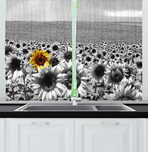 (Ambesonne Modern Decor Kitchen Curtains, Sunflower Field Black and White with a Single Yellow Flower Spring Landscape Image, Window Drapes 2 Panels Set for Kitchen Cafe, 55W X 39L Inches, Grey)