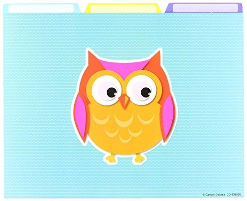 Carson Dellosa Colorful Owls File Folders (136009) (Carson Dellosa File Folder)
