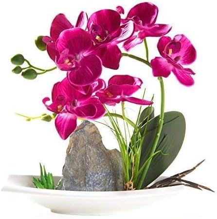 Bright Purple Phalaenopsis Orchid Arrangement in a Decorative Vase
