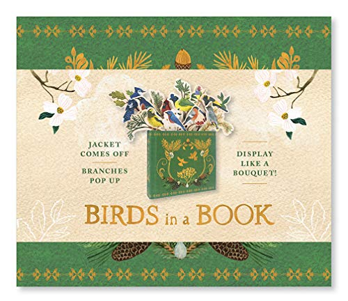 Pdf Relationships Birds in a Book  (A Bouquet in a Book): Jacket Comes Off. Branches Pop Up. Display Like a Bouquet! (UpLifting Editions)