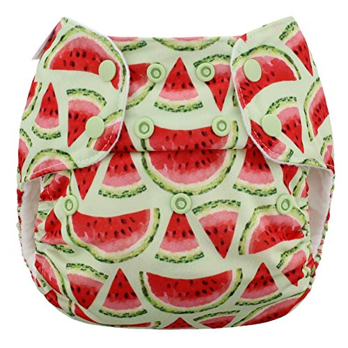 Blueberry One Size Simplex All in One Cloth Diapers, Made in USA (Watermelon)