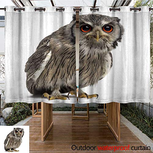 WinfreyDecor Outdoor Curtains for Patio Waterproof Northern White Faced owl Ptilopsis leucotis (Year Old) W84 x L72