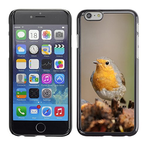 "Premio Sottile Slim Cassa Custodia Case Cover Shell // F00008508 oiseau // Apple iPhone 6 6S 6G PLUS 5.5"""